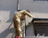 火災保険の現地調査が家にやって来た!【調査は1時間で終了】